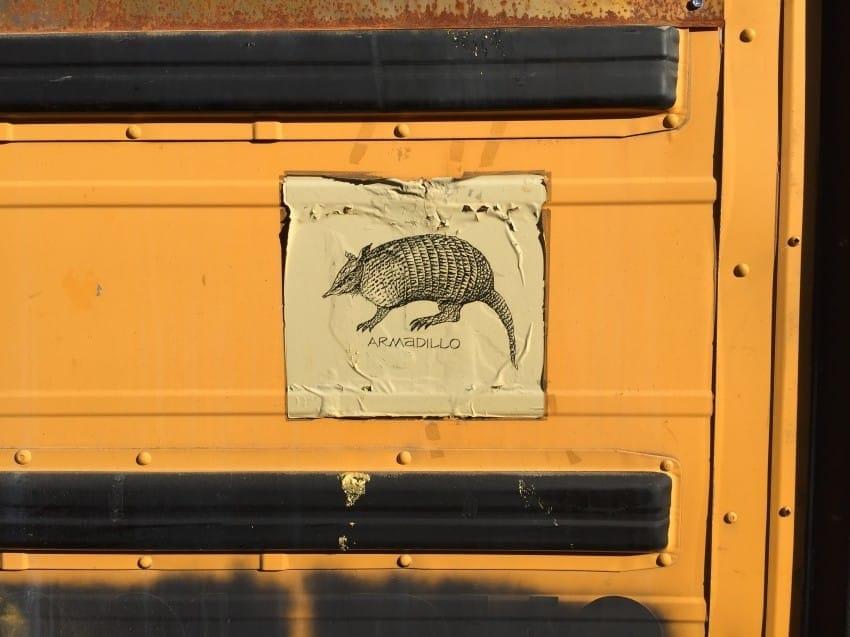 bus 46