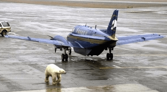 airplane-40