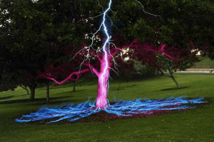 Amazing Nature Photos You Won't Believe Are Real